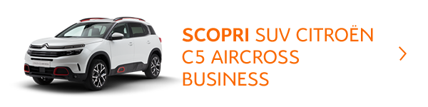 C5_Aircross_Business