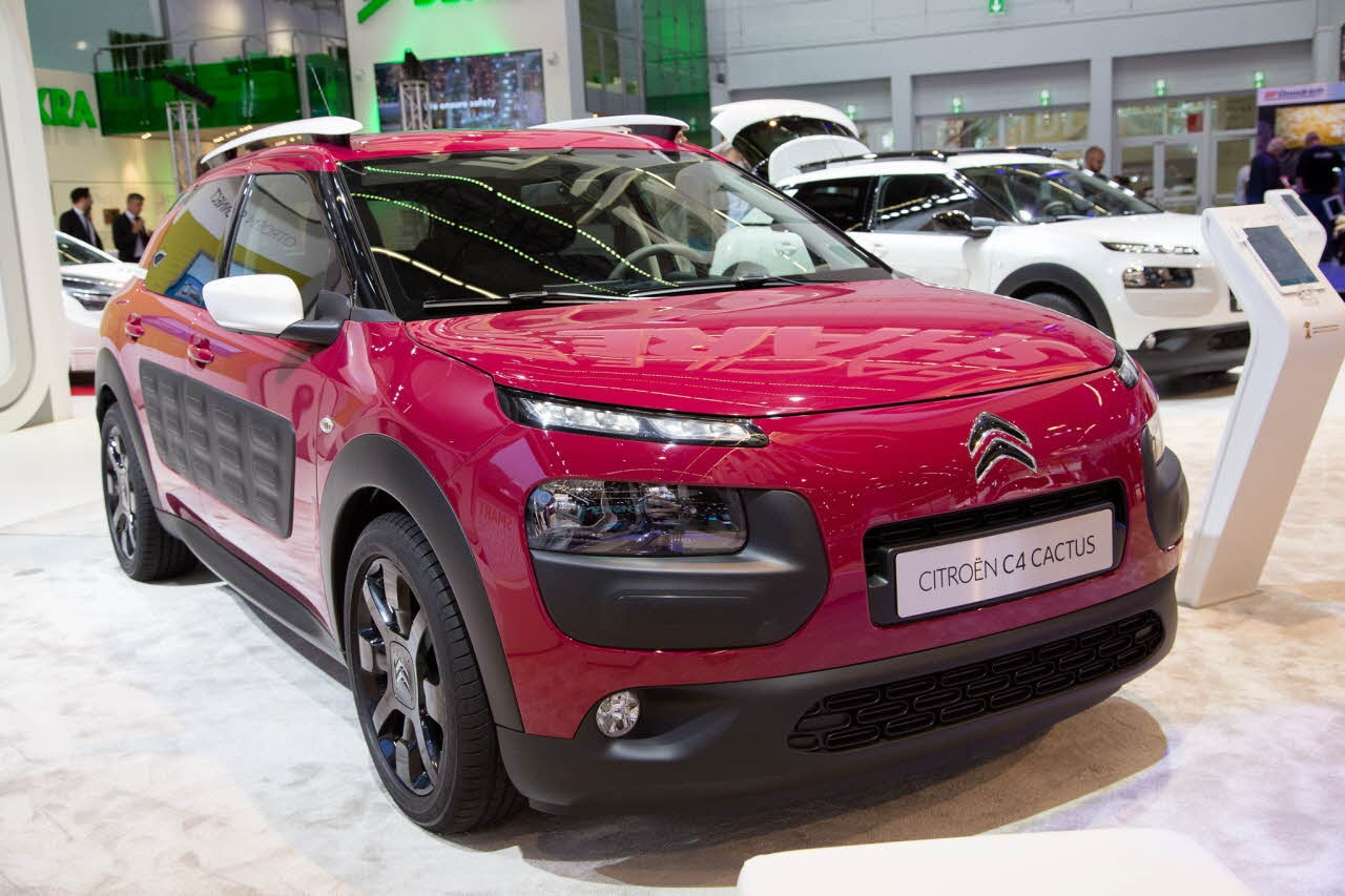 c4 cactus jelly red