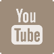 YOU TUBE DS